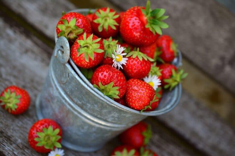 jordgubbar-i-liten-gra-metallhink
